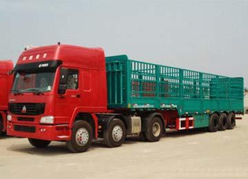 牲畜物流运输